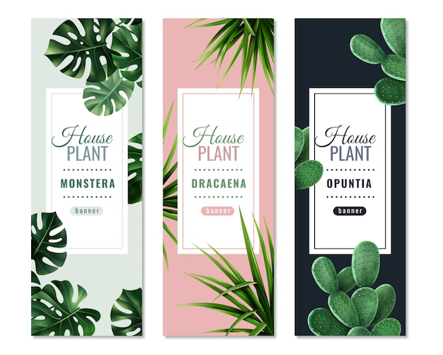Realistic house plants vertical banners