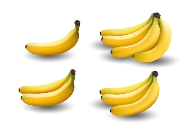 Realistic illustration bananas