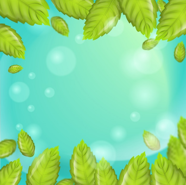 Realistic illustration fresh mint leaves vector
