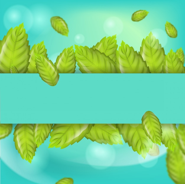 Realistic illustration horizontal mint leaves 3d