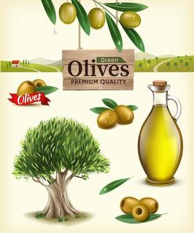 フルーツオリーブ、オリーブオイル、オリーブの枝、オリーブの木、オリーブファームのリアルなイラスト。オリーブプランテーションを背景に現実的なオリーブの枝を持つグリーンオリーブのラベル
