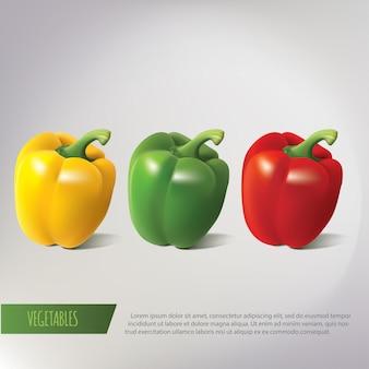 3つのピーマンのリアルなイラスト。黄色、赤、緑のコショウ。