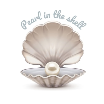 Realistic illustration of open seashell with shining pearl inside isolated on white background.  template with space for text.