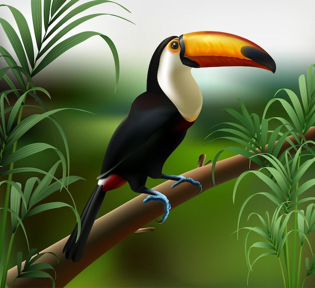 Realistic illustration of toucan bird on jungle forest