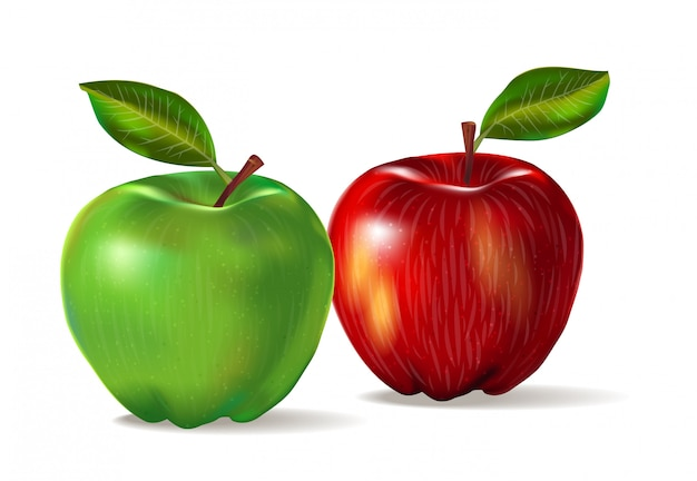 2つの果物のリアルなイメージ:皮の質感を持つ赤と緑のリンゴ。影とlievesと白い背景で隔離の2つのリンゴのセットです。