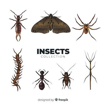 현실적인 곤충 수집