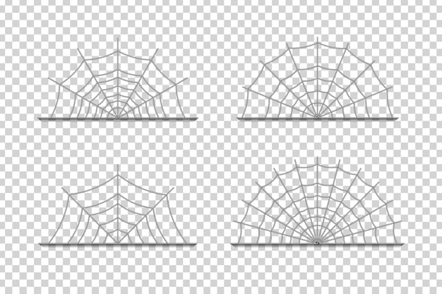 Realistic isolated spider web borders
