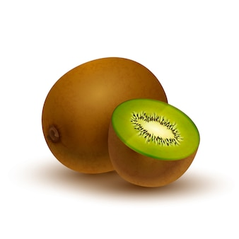 Realistic kiwi, glossy icon with shadow isolated on white