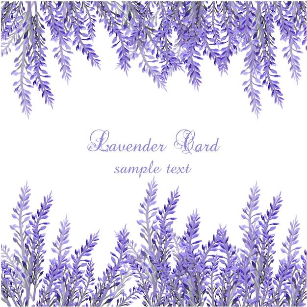 Lavanda Vectors Photos and PSD files Free Download
