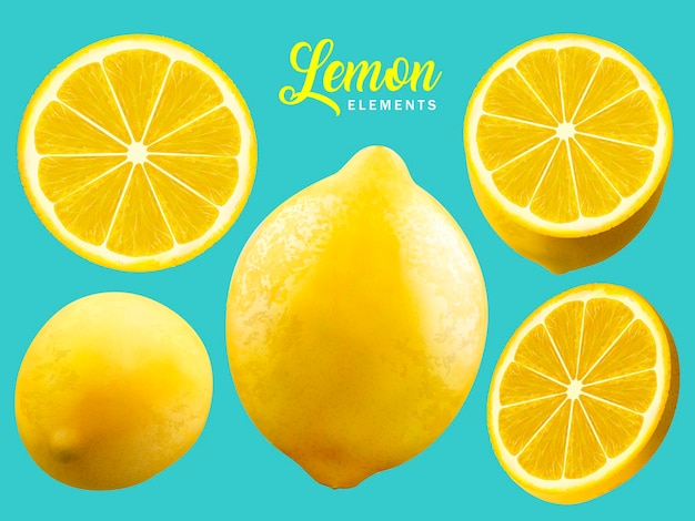 Realistic lemon elements illustration