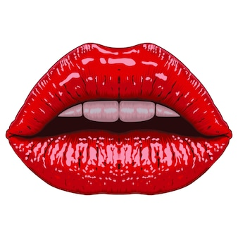 Realistic lips illustration
