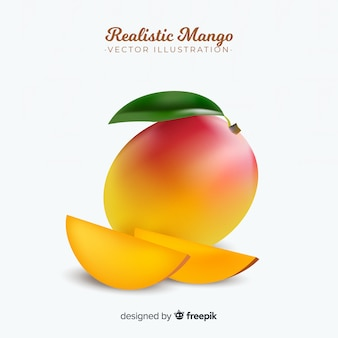 Realistic mango illustration