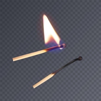 Realistic matches, lighted match and burned match.