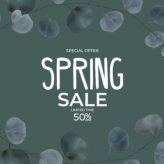 Realistic natural spring sale leaves eucalyptus.