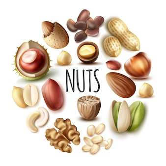 Realistic nuts round concept with nutmeg walnut almond hazelnut chestnut pistachio cashew pine pecan nuts isolated