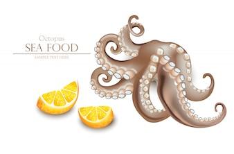 Realistic octopus sea food