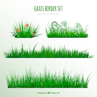 Realistic pack of great grass borders