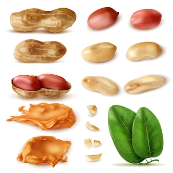 Realistic peanut set of isolated images of beans in shell with green leaves and peanut butter