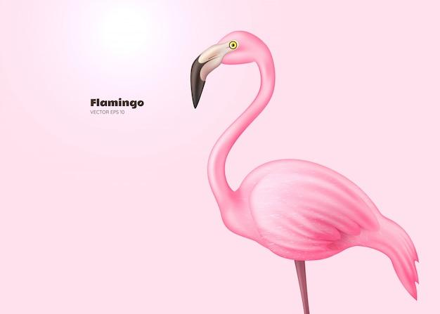 Realistic  pink flamingo