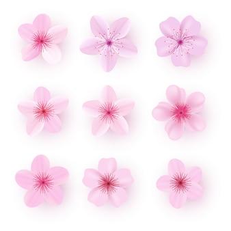Realistic pink sakura petals icon set