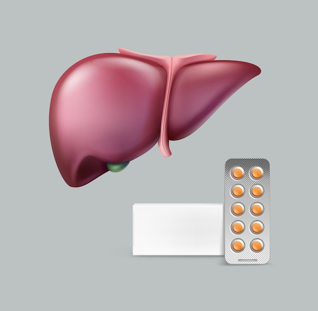 Realistic pinkish healthy liver with blank package of pills close up front view