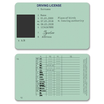 Realistic plastic driver licence back and front template