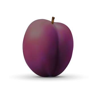 Realistic plum isolated on white