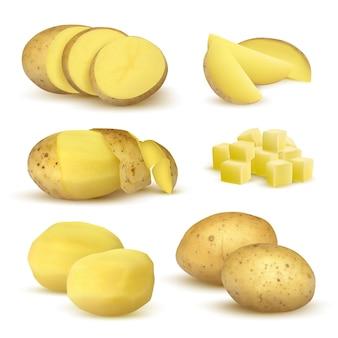 リアルなジャガイモ。食料品の天然物野菜野菜セットのための新鮮なスライスされたエコ食品植物。 Premiumベクター
