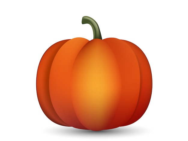 Realistic pumpkin isolated on white