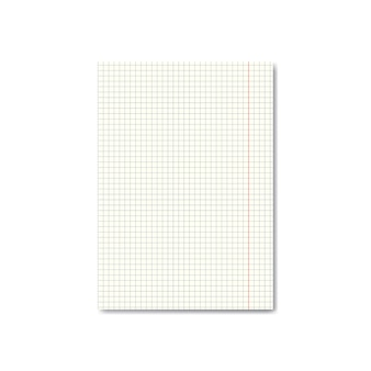Realistic quadrille or graph paper sheet with margins