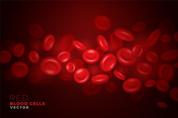 Realistic red blood cells flowing through artery background
