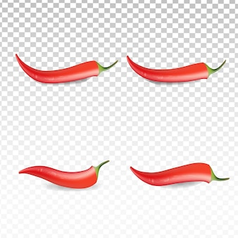 Realistic red chili collection set on transparent white background