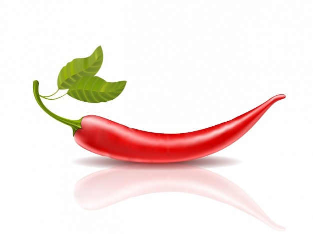 Realistic red chilli