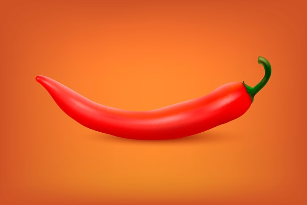 Realistic red hot natural chili pepper.