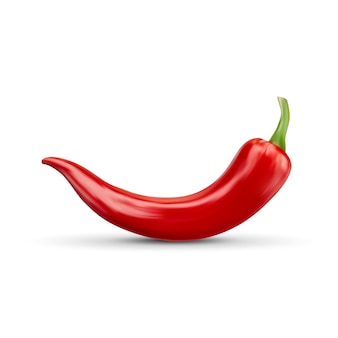 Realistic red hot natural chili pepper