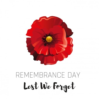 Realistic red poppy flower symbol, 3d remembrance day november 11 poster with lest we forget text.