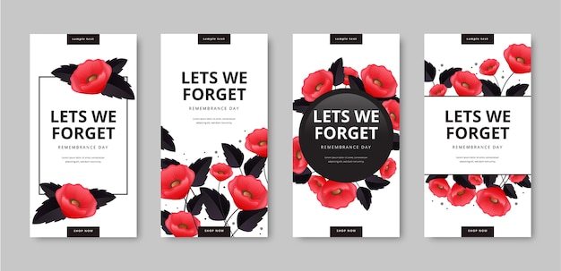 Realistic remembrance day instagram stories collection