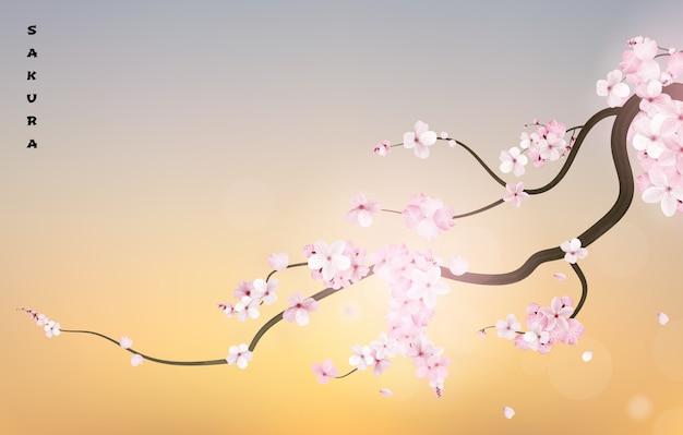 Realistic sakura japan cherry branch