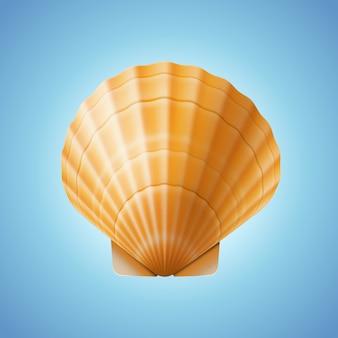 Реалистичная раковина морского гребешка, изолированный фон, иллюстрация
