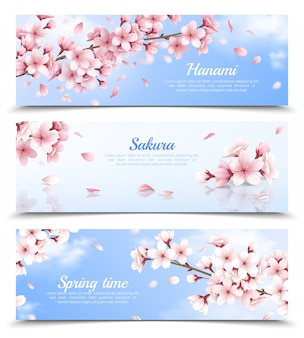 Realistic set of three horizontal banners with blossoming sakura flowers on blue sky background isolated illustration