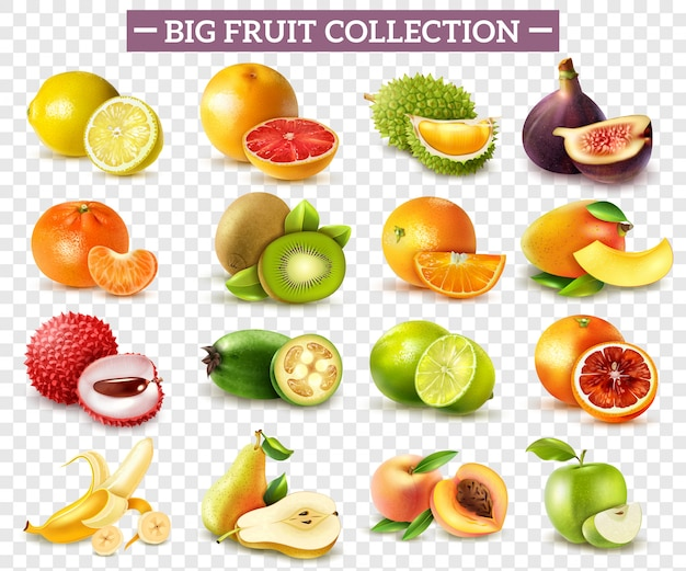 Realistic set of various kinds of fruits with orange kiwi pear lemon lime apple isolated on transparent