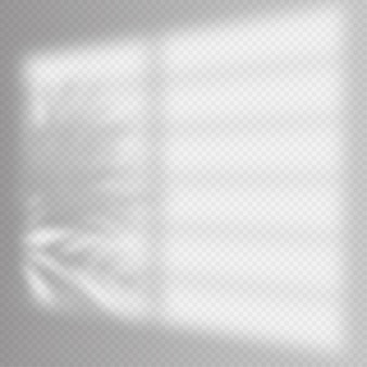 Realistic shadows overlay template. window jalousie shadow frame and palm tree, natural interior soft light. shadow overlay effect.