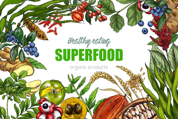 Realistic sketch superfood frame
