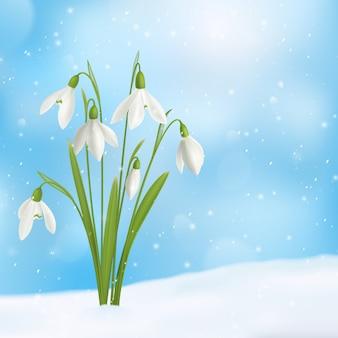 Реалистичная композиция из подснежников и снега с букетом цветов, выросшим на поверхности снега с изображением неба снежинок
