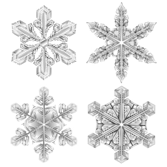 Realistic snowflake black and white  set