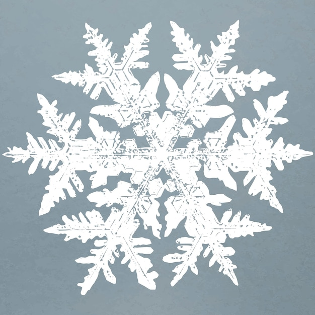 Realistic snowflakes element vector in blue background