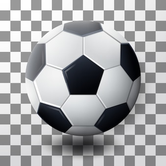 Realistic soccer ball vector isolated