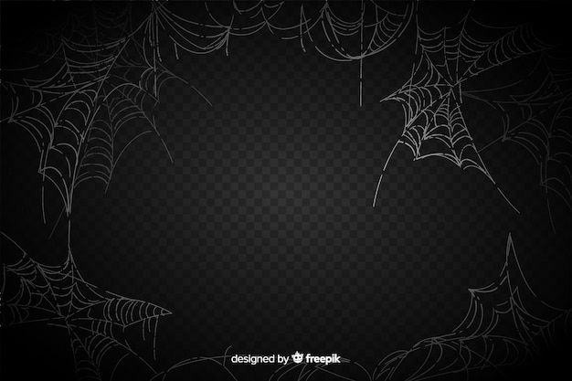 Realistic spider web on black background