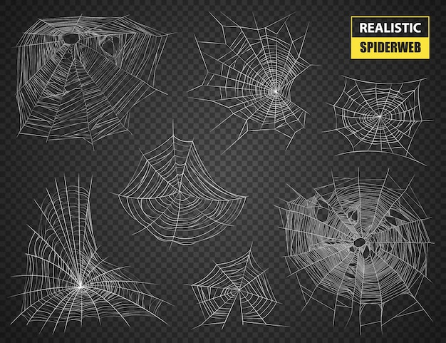 Realistic spiderweb isolated set