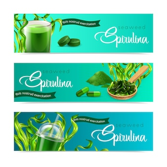 Striscioni orizzontali realistici di spirulina con alghe mature e prodotti pronti